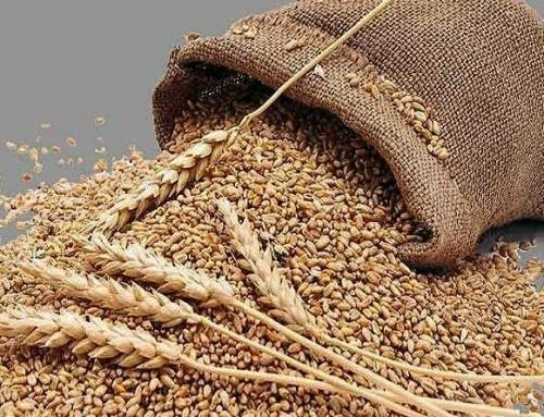 Zekat na poljoprivredne proizvode
